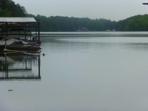 Explore an array of Lake Lanier, US vacation rentals, including Houses, Cabins & more bookable online. Choose from more than properties, ideal house rentals for families, groups and couples. Rent a whole home for your next vacation.